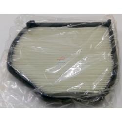 filter air 2165 1196